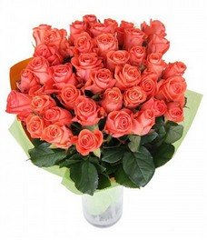 21 Роза R563