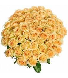 51 Роза R023
