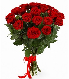 21 Роза R268