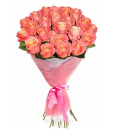 21 Роза R279