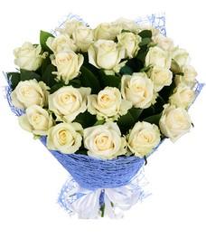21 Роза R418