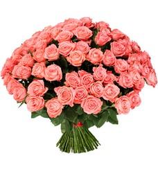 51 Роза R466