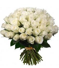51 Роза R465