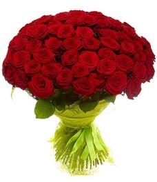 51 Роза R461