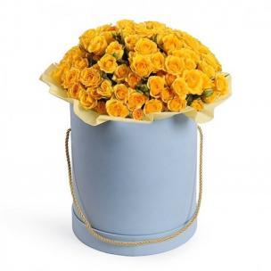 Кустовые Розы P083