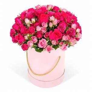 Кустовые Розы P084
