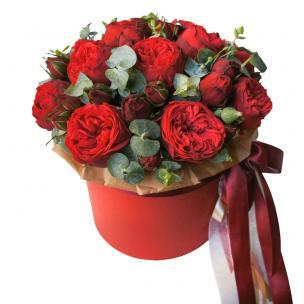 Кустовые Розы P087