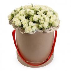 Кустовые Розы P088