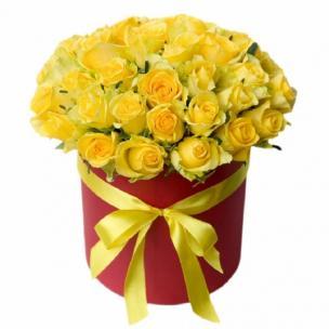 Розы P002