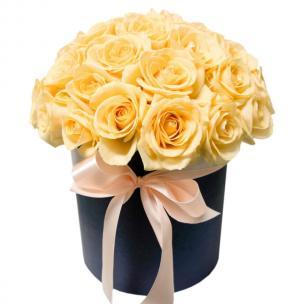 Розы P006