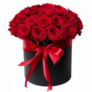 Розы P008