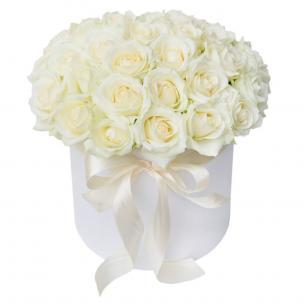 Розы P011
