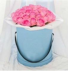 Розы P015