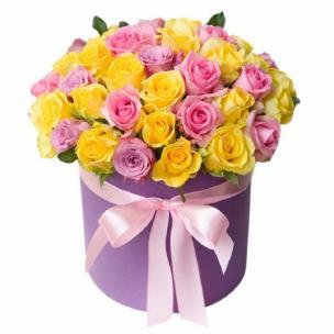 Розы P016