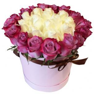 Розы P017