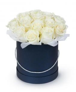 Розы P020