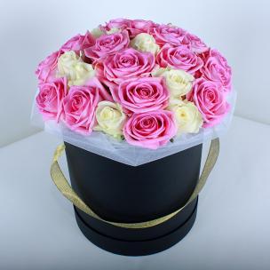 Розы P021