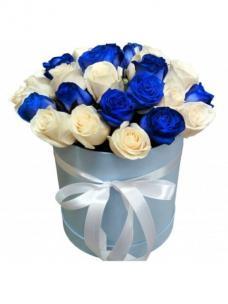 Розы P025