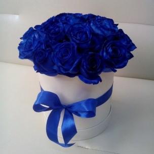 Розы P028