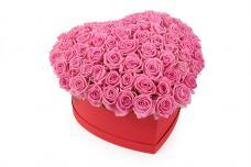 Розы P036