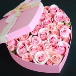 Розы P040