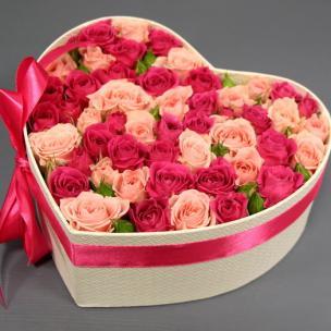 Розы P043