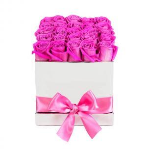 Розы P058