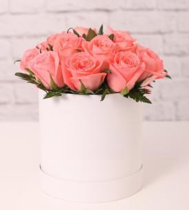 Розы P060