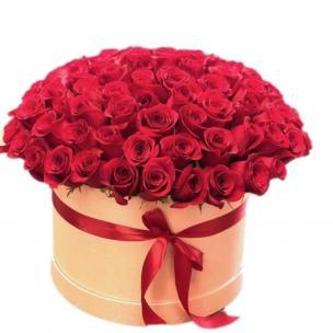 Розы P061
