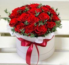 Розы P069