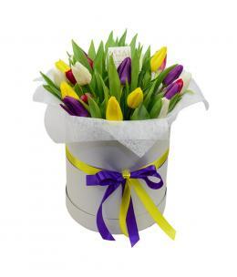 Тюльпаны P139
