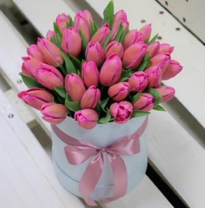Тюльпаны P140