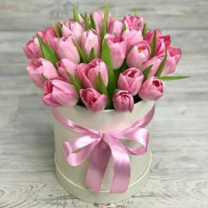 Тюльпаны P141