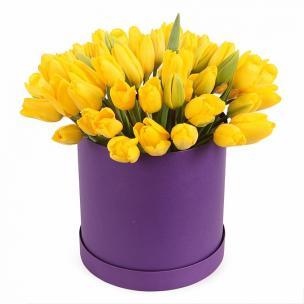 Тюльпаны P143