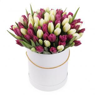 Тюльпаны P149
