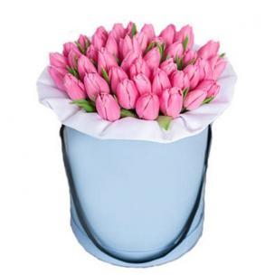 Тюльпаны P152