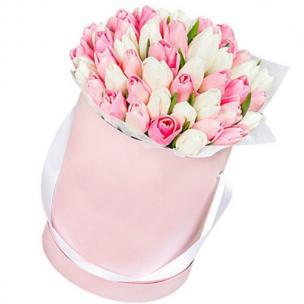 Тюльпаны P153