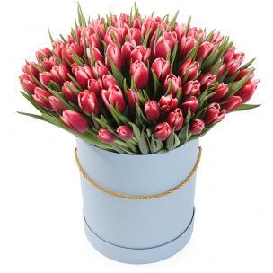 Тюльпаны P157