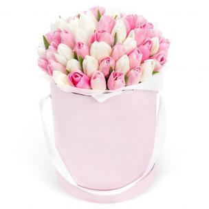 Тюльпаны P161