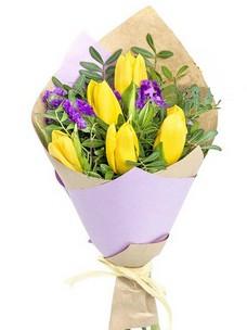 5 Тюльпанов T007