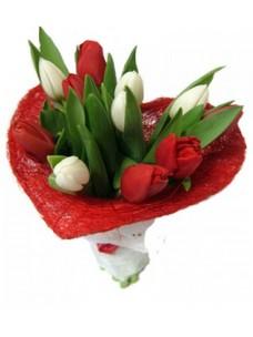 11 Тюльпанов T010