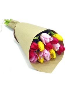 15 Тюльпанов T020