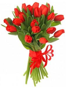 21 Тюльпан T032