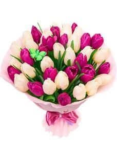 35 Тюльпанов T053